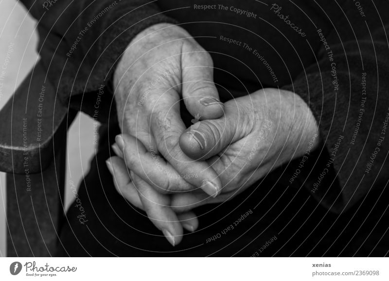 Hands retired - folded hands in black and white Fingers Man Masculine Male senior 45 - 60 years Adults 60 years and older Senior citizen Wood Sit Wait Calm