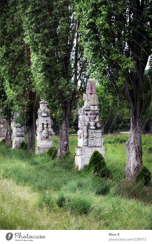 far away Vacation & Travel Expedition Sculpture Tree Grass Park Old Exotic Statue Stone Regensburg Colour photo Exterior shot Deserted Nature Meadow Culture Art