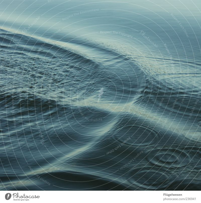 Water Ocean Summer Cold Waves Round Surface of water Swell Wavy line