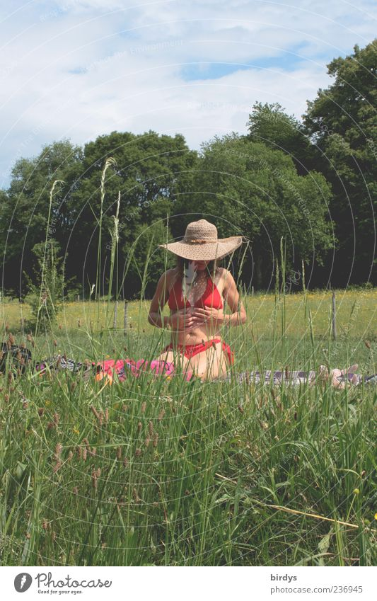 Enjoy the sun Happy Harmonious Young woman Youth (Young adults) Life 1 Human being Nature Plant Summer Beautiful weather Grass Meadow Touch To enjoy Crouch