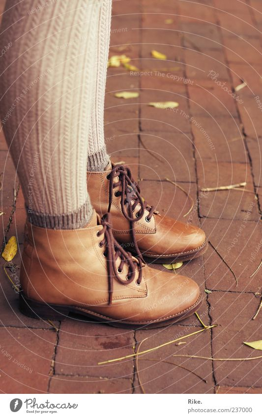 stand still. Style Human being Feminine Legs Feet 1 Nature Autumn Leaf Fashion Stockings Tights Leather Footwear Boots Hiking boots Stand Wait Hip & trendy