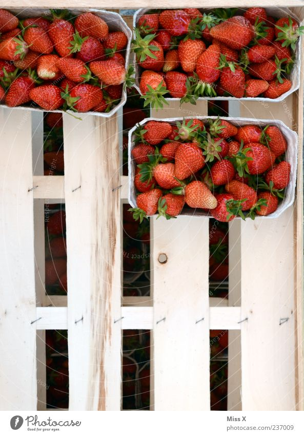 shell Food Fruit Nutrition Organic produce Fresh Delicious Juicy Sweet Strawberry Fruit bowl Box of fruit Harvest Colour photo Exterior shot Pattern Deserted