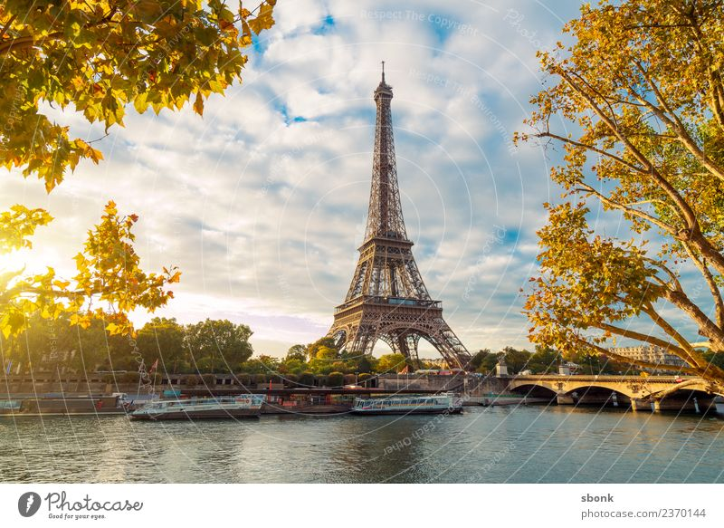 Paris in the morning Vacation & Travel Summer Town Skyline Tourist Attraction Eiffel Tower Love France urban City architecture tourism French cityscape view sky