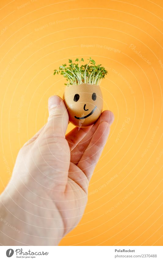 #S# Don Kressos Food Happy Joy Egg Hand Easter Cress Art Creativity Joke Orange Plant Sustainability Ecological Growth Face Infancy Handicraft Fresh