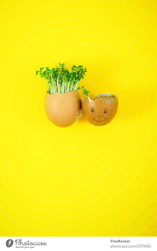 #S# Egg-friends Food Joy Easter Cress Art Esthetic Joke Green Yellow Sustainability Ecological Growth Hair and hairstyles Hair loss Society Friendship Infancy