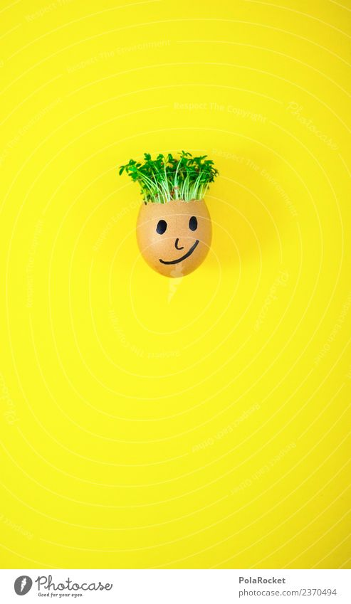 #S# Don Kressos V Food Happy Egg Yellow Easter Cress Creativity Joke Plant Sustainability Ecological Growth Face Infancy Handicraft Fresh Cool (slang)