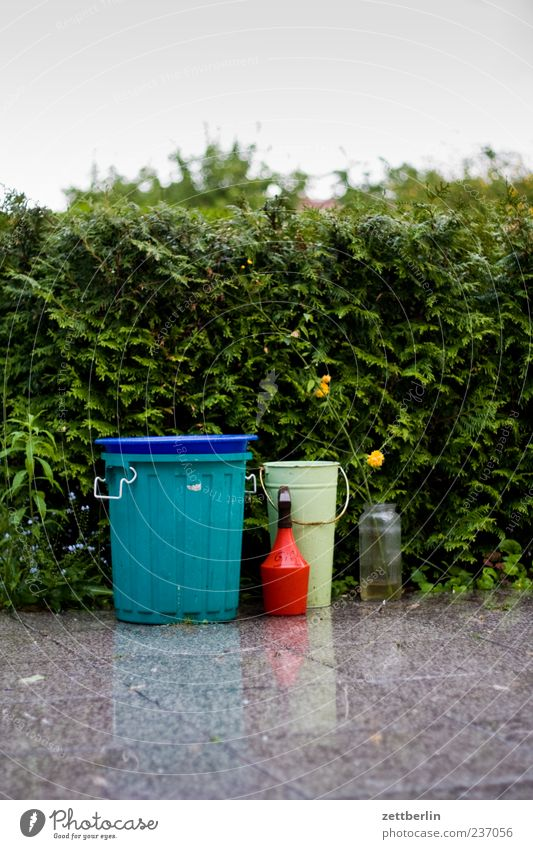 Nature Water Plant Summer Calm Blossom Garden Rain Environment Wet Growth Blossoming Elements Terrace Vase Trash container
