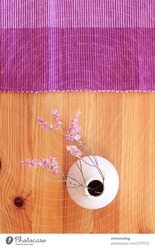 White Flower Wood Blossom Moody Interior design Pink Natural Exceptional Arrangement Table Decoration Round Creativity Violet Furniture
