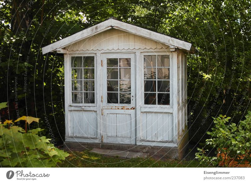 Nature White Vacation & Travel Plant Summer Leaf House (Residential Structure) Environment Architecture Garden Door Leisure and hobbies Idyll Hut Gardening