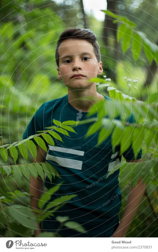 Portrait of young beautiful teen boy in forest Human being Nature Vacation & Travel Youth (Young adults) Man Summer Beautiful Green Tree Leaf Forest Face Adults