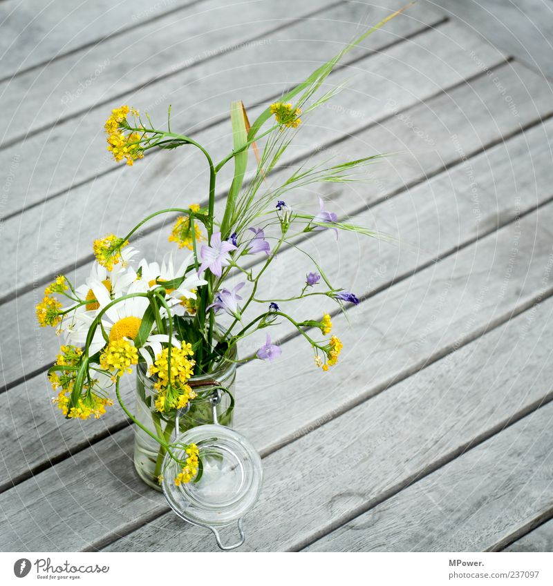 Bouquet Still Life Wooden table Flower vase Spring flower Table decoration Spring flowering plant Preserving jar