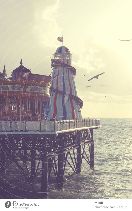 Br-Br-Brighton Tourism Trip Sightseeing Beach Ocean Dream house Fairs & Carnivals England Jetty Kitsch Colour photo Exterior shot Day Central perspective Bird