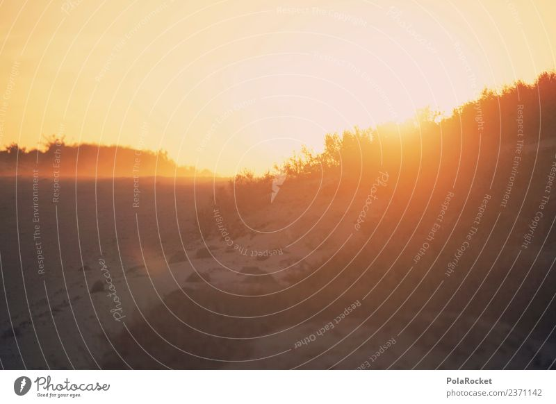 #AS# daylight Environment Nature Landscape Elements Sand Sun Sunrise Sunset Sunlight Summer Climate Beautiful weather Wind Esthetic Sunbeam Gold Fuerteventura