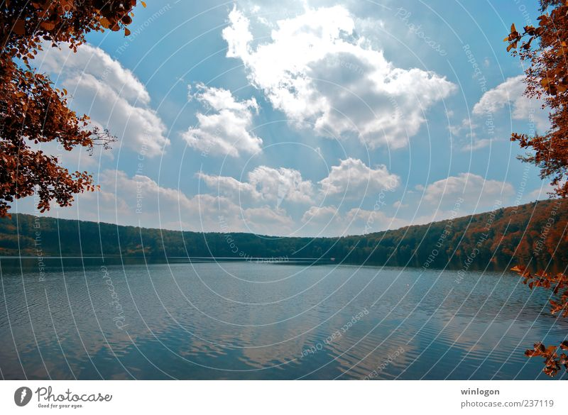 look! Sky Nature Water Tree Plant Clouds Forest Relaxation Environment Autumn Coast Lake Horizon Wait Trip Tourism