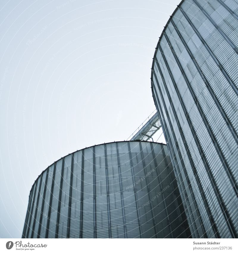 Gray Facade Energy industry Tower Industry Round Industrial Photography Manmade structures Silo Grain silo