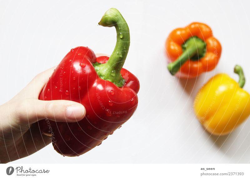 Fresh red pepper Food Vegetable Pepper Nutrition Eating Organic produce Vegetarian diet Diet Cooking Arrange Healthy Wellness Life Senses Kitchen Hand