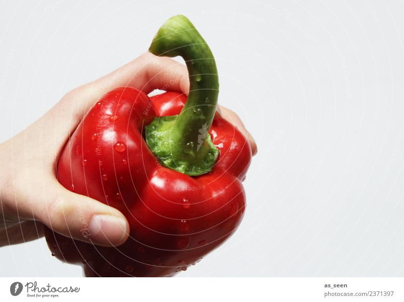 Fresh red pepper Vegetable Pepper Nutrition Eating Organic produce Vegetarian diet Diet Healthy Wellness Life Well-being Senses Fruit To hold on Exotic