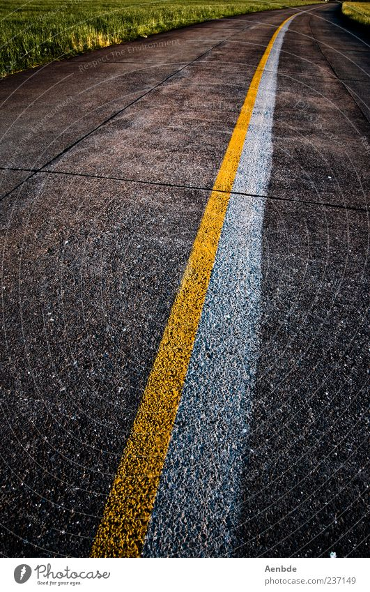 Road to nowhere Street Marker line Yellow White Green Asphalt Colour photo Exterior shot Deserted Evening Line 1