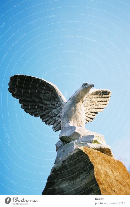 Sky Blue Stone Bird Art Flying Concrete Feather Wing Statue Craft (trade) Stagnating Eagle Sculpture