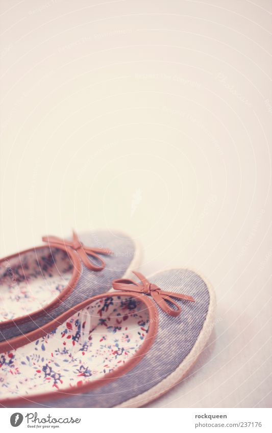 Going for a walk Feminine Fashion Clothing Footwear Beautiful Blue Brown Pink Ballerina Bow Colour photo Multicoloured Interior shot Close-up Detail