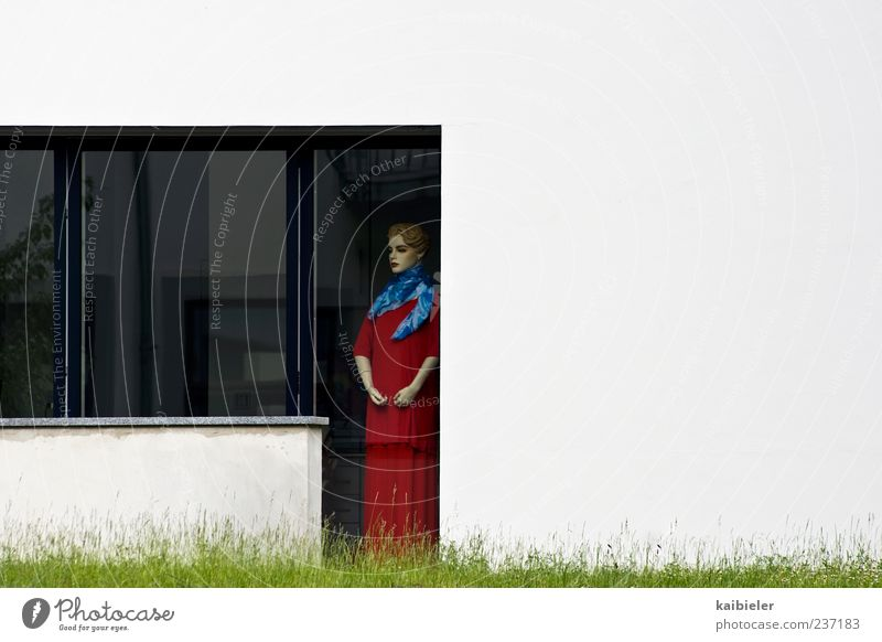 expectations Living or residing Flat (apartment) Garden Feminine Woman Adults Meadow Detached house Terrace Window Looking Stand Wait Red White Loneliness