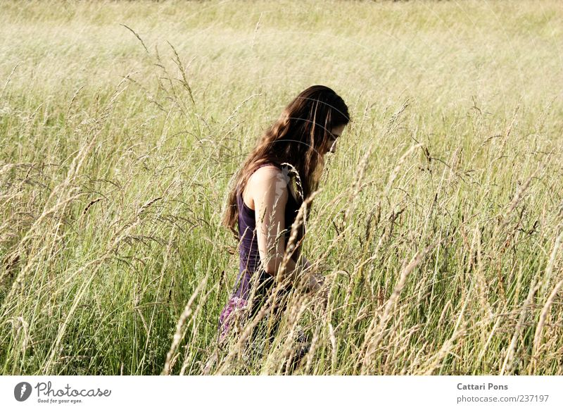 Human being Woman Youth (Young adults) Beautiful Loneliness Adults Landscape Feminine Freedom Grass Contentment Field Leisure and hobbies Young woman Observe