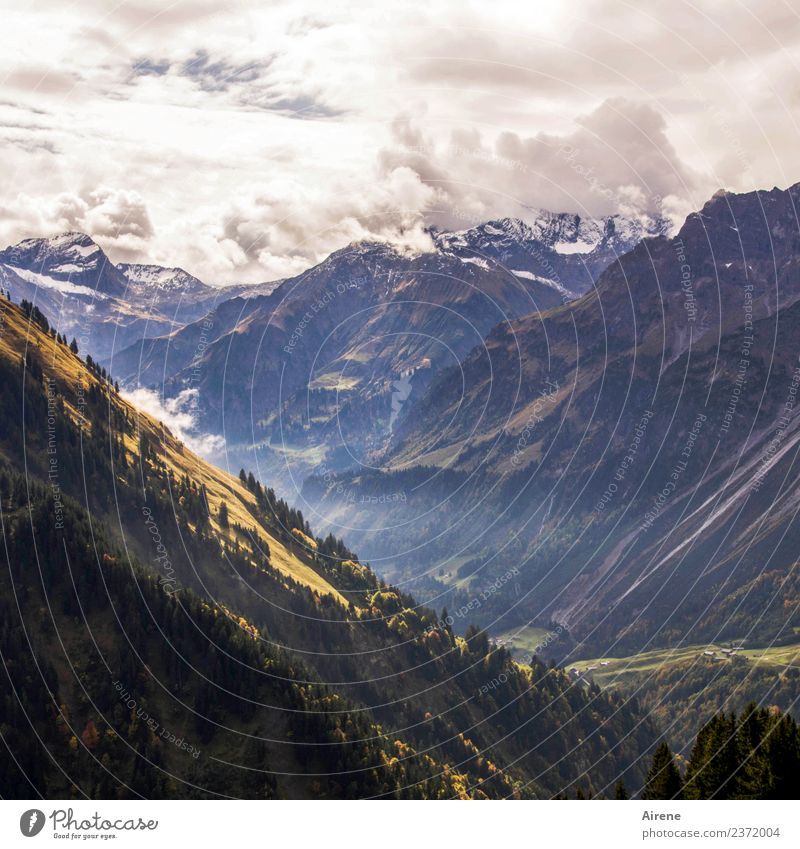 mountain backdrop Far-off places Freedom Mountain Hiking Clouds Autumn Weather Alps Forest of Bregenz Peak Snowcapped peak Slope Valley Gigantic Infinity Tall
