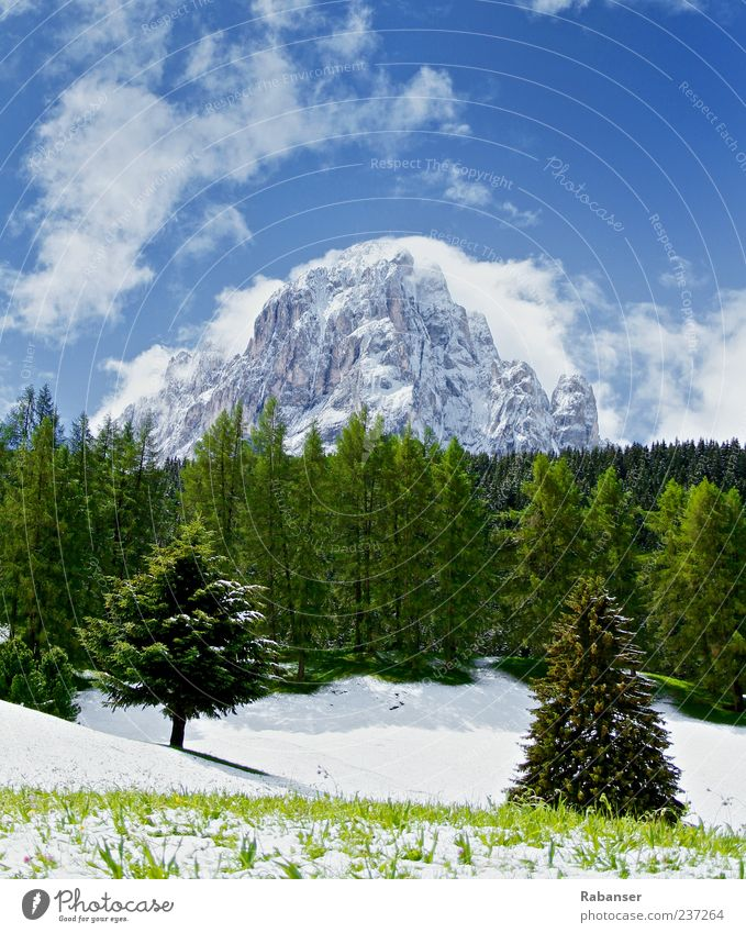 Sky Nature Blue White Green Summer Clouds Black Forest Environment Landscape Meadow Cold Snow Mountain Ice