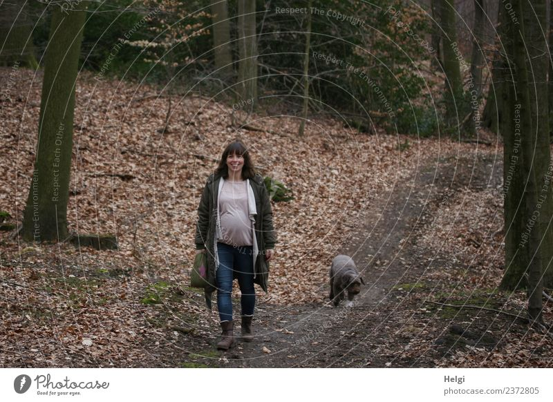 young pregnant woman with long brunette hair walks with her dog on a forest path Human being Feminine Young woman Youth (Young adults) Adults 1 30 - 45 years