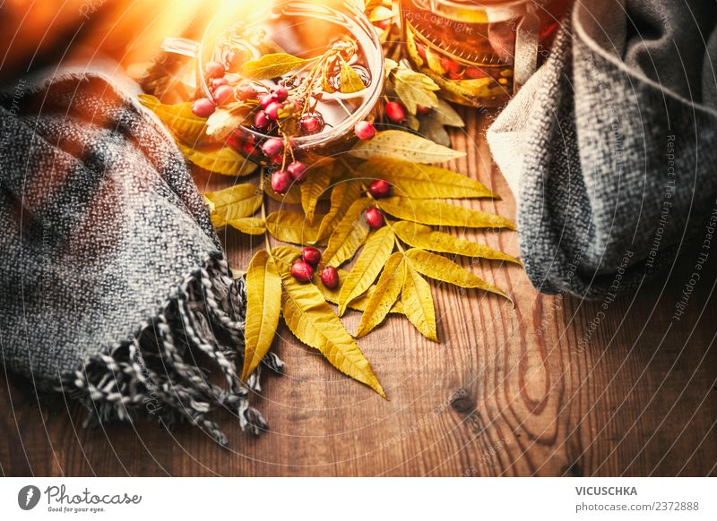Cup with autumn tea and scarf Beverage Hot drink Tea Lifestyle Style Design Healthy Healthy Eating Relaxation Living or residing Table Thanksgiving