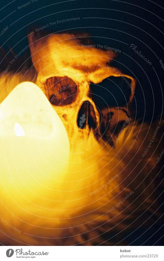 Dark Death Candle Pelt Historic Church service Mystic Magic Eerie Skeleton Devil Death's head Iconic Candlelight Religion and faith Voodoo