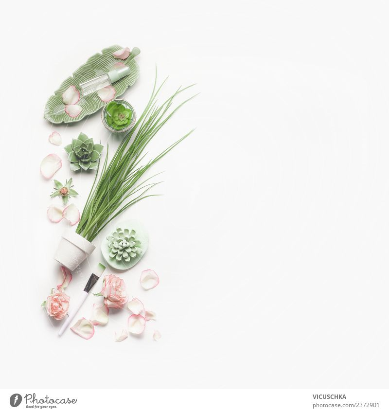 Nature Plant Beautiful Green Healthy Background picture Style Design Modern Shopping Wellness Rose Beauty Photography Personal hygiene Cosmetics Cream