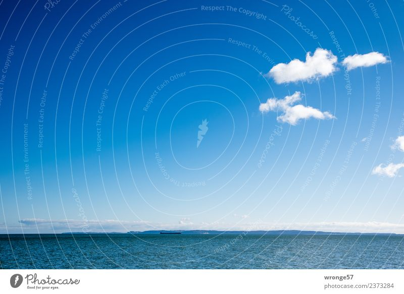 Horizon and sea Landscape Air Water Sky Clouds Spring Beautiful weather Waves Coast Bay Baltic Sea Free Infinity Maritime Blue White Ocean Surface of water