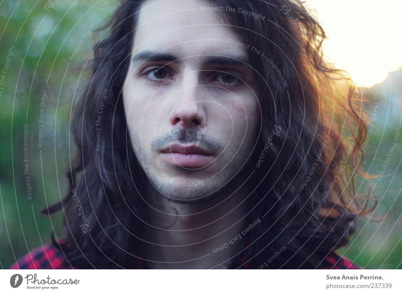 Human being Youth (Young adults) Adults Masculine 18 - 30 years Uniqueness Young man Curl Brunette Long-haired Earnest Stubble Dark-haired Face of a man