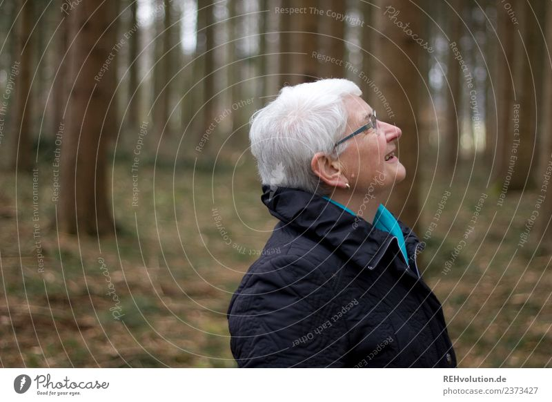 Senior citizen looks up in the forest Human being Feminine Grandmother Head 1 60 years and older Environment Nature Autumn Winter Forest Jacket Eyeglasses