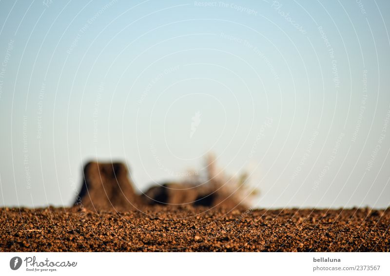 Sky Nature Plant Summer Landscape Mountain Warmth Environment Spring Stone Brown Sand Rock Horizon Earth Air
