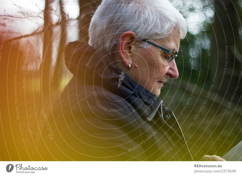 Senior citizen looks at her smartphone in the autumn forest Leisure and hobbies Cellphone Human being Feminine Woman Adults Female senior Grandmother Life 1
