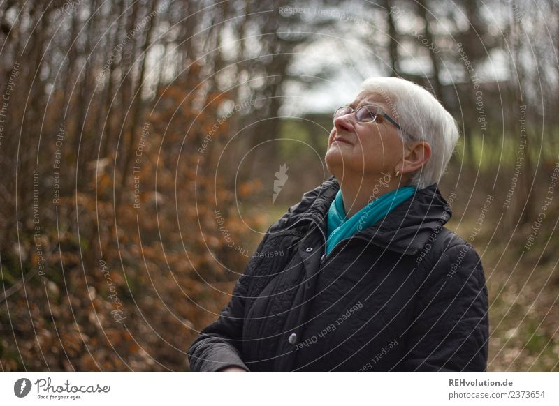 Senior citizen looks up in autumn forest Human being Feminine Woman Adults Female senior Grandmother Life 1 60 years and older Environment Nature Landscape