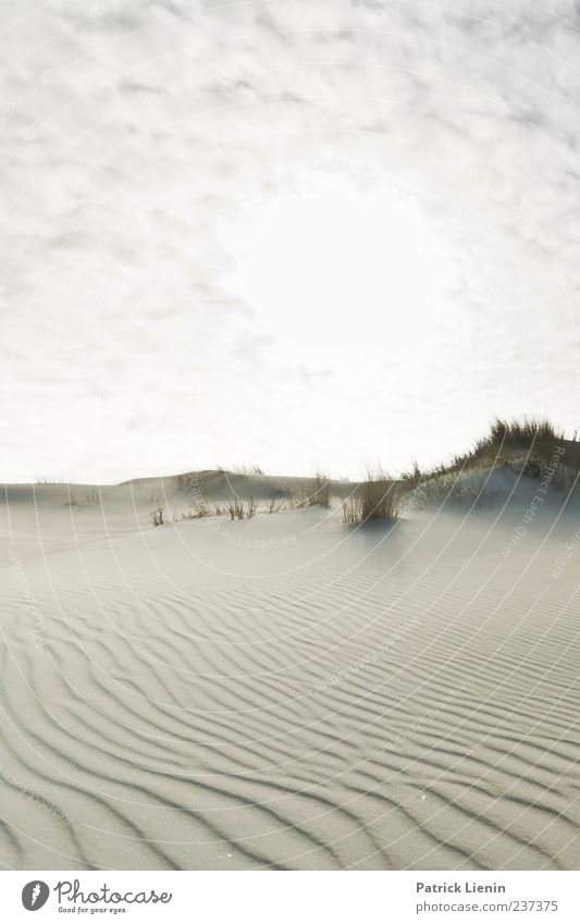 Spiekeroog | Neverending Dream Beach Waves Environment Nature Landscape Plant Elements Sand Sky Sunlight Climate Weather Beautiful weather Hill Coast North Sea