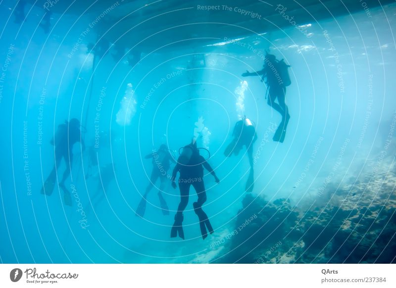 safety stop Relaxation Vacation & Travel Tourism Adventure Ocean Belize Caribbean Sea Central America blue hole Watercraft Aquatics Dive Human being Group