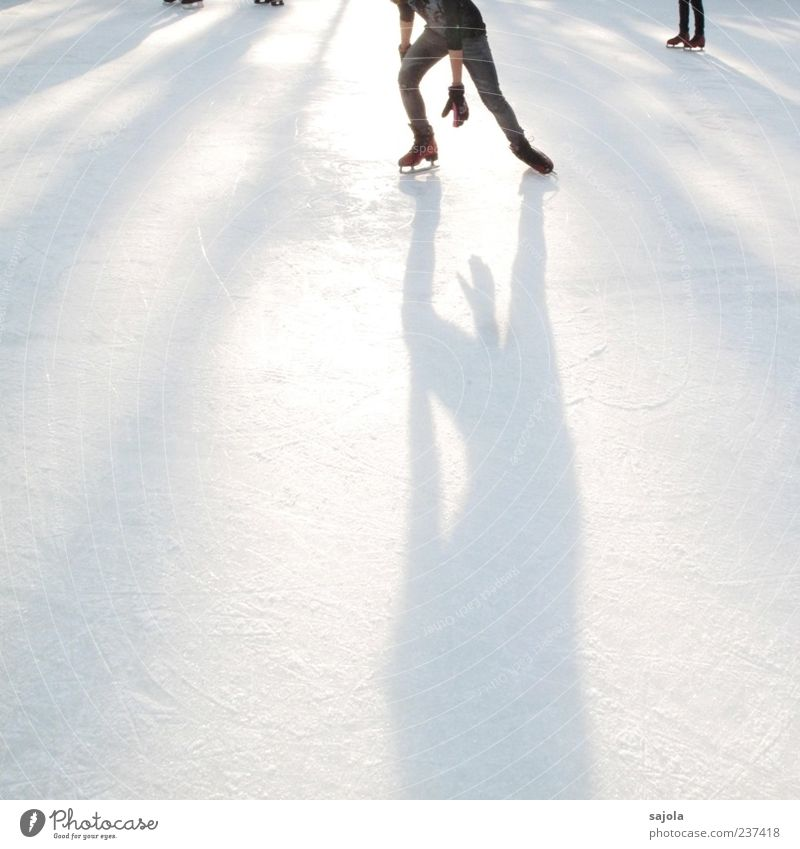 Human being Man White Sports Ice Esthetic Frost Visual spectacle Sportsperson Winter sports Ice-skating Back-light Shadow play Art Frozen surface Skating rink
