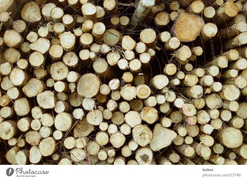 Wood Brown Tree trunk Window pane Stack Tree bark Haircut Annual ring