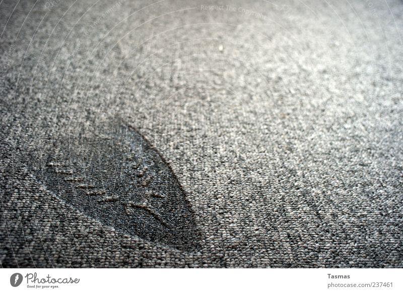 Gray Broken To fall Carpet Hideous Burnt Imprint Detail Technology Electric iron