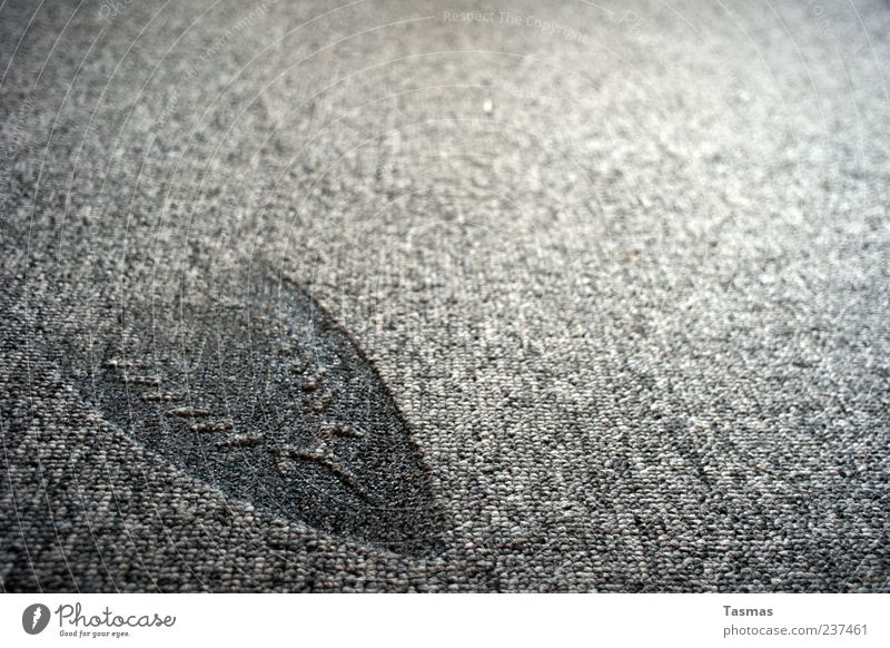 lasting impression Carpet Electric iron To fall Hideous Burnt Imprint Structures and shapes Broken Gray Colour photo Close-up Detail Macro (Extreme close-up)