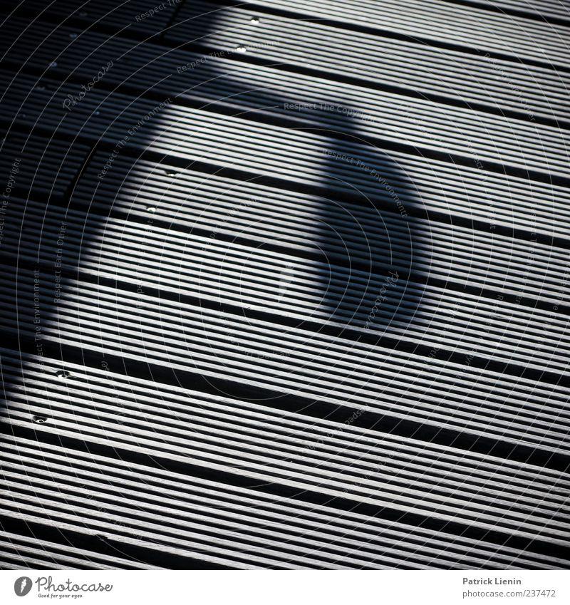 Wood Line Safety Threat Footbridge Video camera Bans Surveillance Contrast