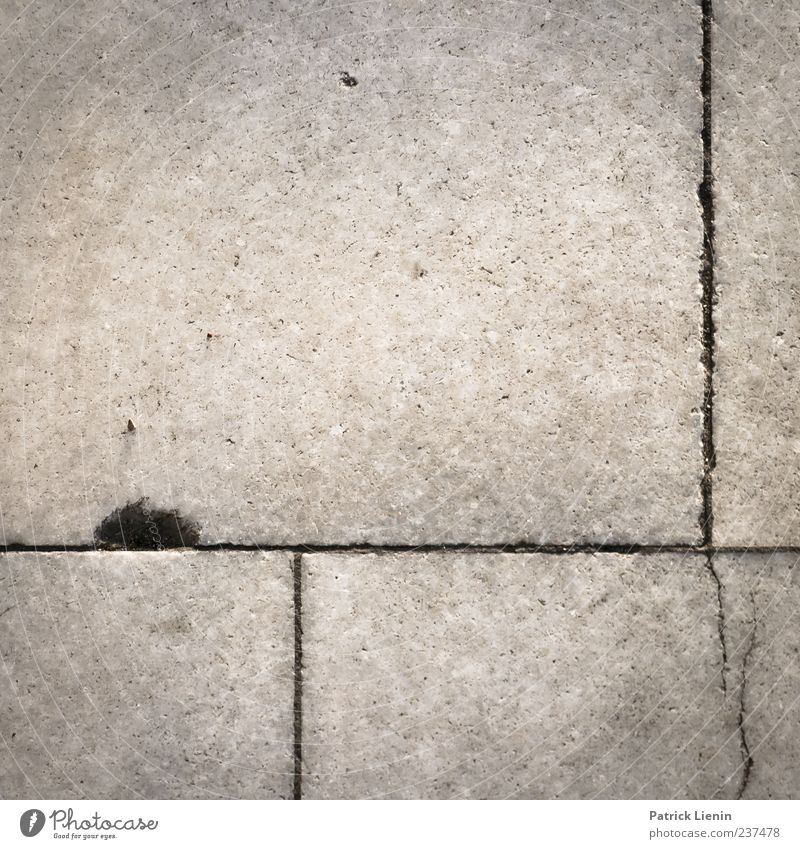 You are a tourist Street Concrete Line Broken Ground Floor covering Crack & Rip & Tear Hollow Empty Subdued colour Exterior shot Close-up Detail Pattern