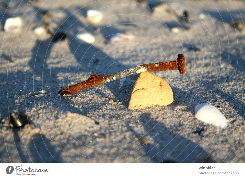 flotsam and jetsam Environment Sand Coast Beach Baltic Sea Ocean Stone Metal Nature Calm Infinity Decline Transience Change Colour photo Exterior shot Close-up