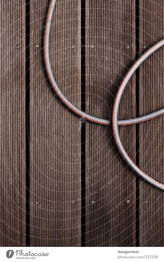 pet Summer Beautiful weather Floor covering Wooden floor Floorboards Garden hose Water hose Wood grain Waterproof All-weather Stripe Furrow Curve Row Screw Gap