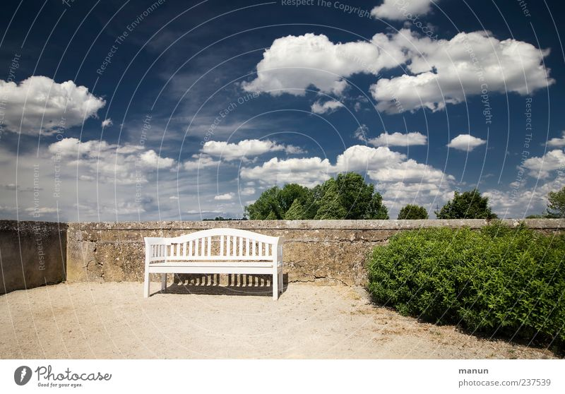 Sky Clouds Calm Wall (building) Wall (barrier) Garden Park Places Beautiful weather Break Bench Seating Blue sky Hedge