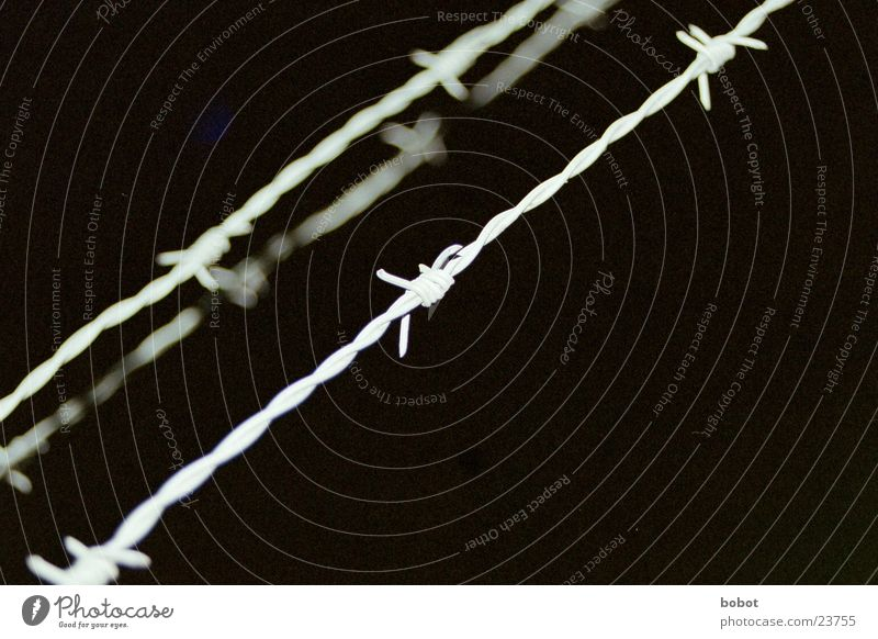 frontier Barbed wire Fence Border Stop Night Stay Industry whoiscocoon